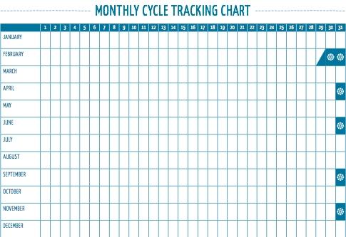 p4p tracking chart